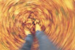 Motieonduidelijk beeld die in Autumn Fall Leaves lopen Royalty-vrije Stock Afbeelding
