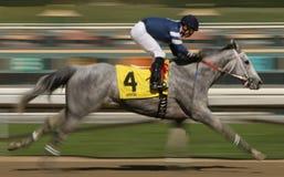 Motieonduidelijk beeld het Rennen Paard Royalty-vrije Stock Fotografie