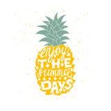 Motievenreisaffiche met ananas royalty-vrije illustratie