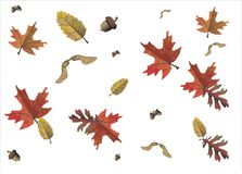 Motif d'automne, saisons illustration de vecteur