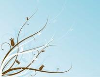 Motif floral d'Aqua Image libre de droits