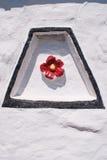 Motif rose de Tudor images stock