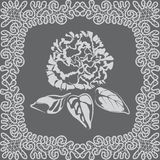 Motif with rose and lace Stock Photo