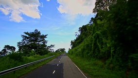 Motion along Curvy Country Road between Green Plant Landscape stock video