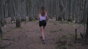 In Motion A Young Woman Walking On The Black Pine Forest Back View 4K. Motion, back view. Energetic young woman in top, shorts and sneakers. Walking through a stock video