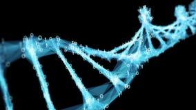 Motion Background Digital Binary Polygon Plexus DNA molecule 4k Loop Alpha Matte stock video footage