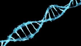 Motion Background Digital Binary Polygon Plexus DNA molecule 4k Loop Alpha Matte stock video