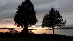 Motion of beautiful sunset view at Stanley Park. In Vancouver BC Canada stock video