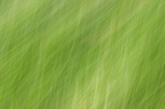A green motion blur abstract texture Royalty Free Stock Photos