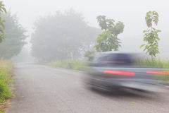 Motion blur of car on road on foggy morning along green tree lin Royalty Free Stock Image