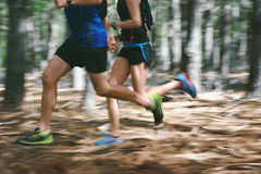 Motion blur forest trail run Royalty Free Stock Photo