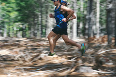 Motion blur forest trail run Royalty Free Stock Image