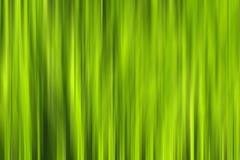 Motion blur grass Stock Images