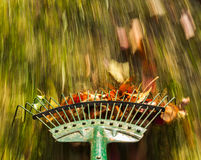 Motion blur on green lawn rake leaves Stock Photo