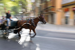 Motion blur horse carriage Royalty Free Stock Images