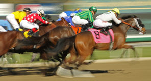 Motion Blur Horse Race Royalty Free Stock Images