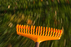 Motion blur on orange lawn rake leaves Royalty Free Stock Photography