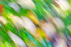 Motion blurred abstract background, pastel autumn colors Stock Photo