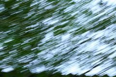 Motion blurred foliage abstract nature  blur  green background.  Stock Photos
