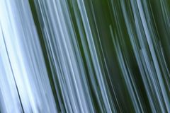 Motion blurred foliage abstract nature  blur  green background.  Royalty Free Stock Images