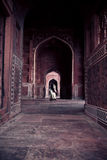 Motion-blurred Lady In An Ornate Sandstone Corridor Stock Image