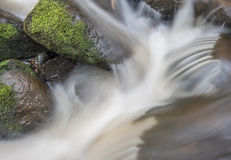 Motion blurred woodland stream Stock Photography