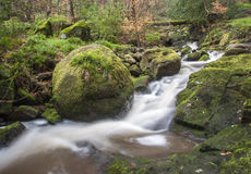 Motion blurred woodland stream Royalty Free Stock Image