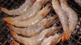 Motion of cooking shrimp on gas grill inside Chinese restaurant. In Taipei Taiwan stock video