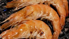 Motion of cooking shrimp on gas grill inside Chinese restaurant. In Taipei Taiwan stock video footage