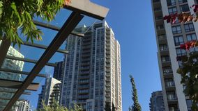 Motion of high rise building and blowing tree leaf. Against blue sky stock video
