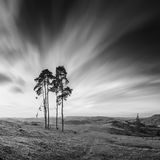 Motion sky. Monochrome Royalty Free Stock Images
