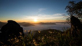 Motion time lapse of the sunrise with mist clouds view at Doi Pha Tang National Park, Chiang Rai province, Thailand. N stock footage