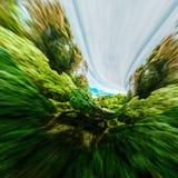 Motion trees landscape Stock Photo