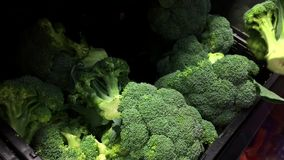 Motion of woman buying broccoli stock video footage