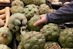 Motion of woman`s hand picking artichoke inside Superstore Royalty Free Stock Image