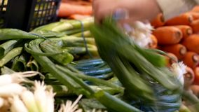 Motion of woman selecting green onion in grocery store stock video