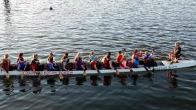 Motion of women rowing teams practicing stock video