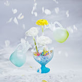 Motions petals and two levitating bottles. Motions petals ant flowers ranunculus in bowl full of gel balls with green and blur levitating bottles Royalty Free Stock Photography