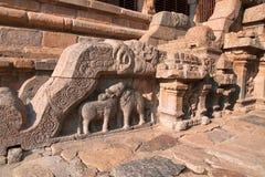 Motiv på balustrader, nordlig ingång till den Nataraja mandapaen, Airavatesvara tempelkomplex, Darasuram, Tamil Nadu arkivfoto