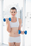 Motivated fit brown haired model in sportswear exercising with dumbbells Stock Image