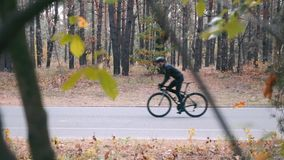 Motivated young male triathlete intensive hard training on road bike in fall city park. Professional cyclist in helmet and cycling. Clothes riding on road stock footage