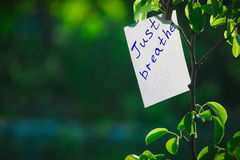 Motivating phrase just breathe. On a green background on a branch is a white paper with a motivating phrase. Motivating phrase just breathe. On a green Stock Image