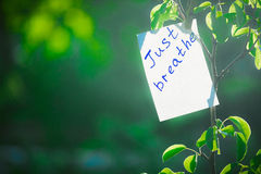 Free Motivating Phrase Just Breathe. On A Green Background On A Branch Is A White Paper With A Motivating Phrase. Stock Image - 94596231