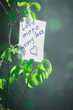 Motivating phrase love more worry less. On a green background on a branch is a white paper with a motivating phrase Stock Image