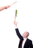 Motivation carrot Royalty Free Stock Image