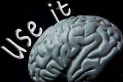 Motivational citationsteckenaffisch för hjärna vektor illustrationer
