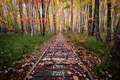 Follow Your Own Path Landscape. Motivational Quote with Fall colors on a Wooden Plank Path royalty free stock photos