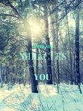 Motivational quote with ttext THERE ARE MIRACLES ALL AROUND YOU Royalty Free Stock Image