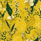 Motivi botanici Modello di fiore senza cuciture isolato Parte posteriore dell'annata royalty illustrazione gratis