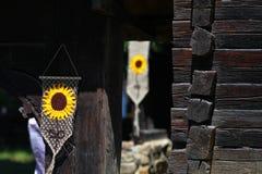 Motivi del girasole Fotografia Stock